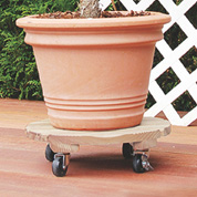 Wooden Round Pot Stand on Wheels - D.35 cm